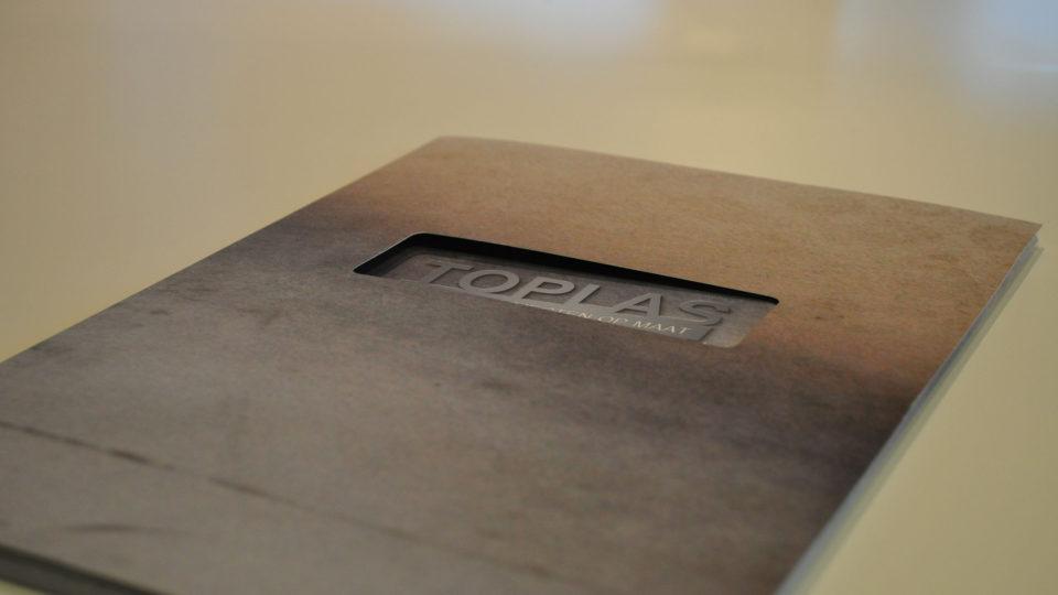 Printed-Walls_Toplas_brochure-960x540